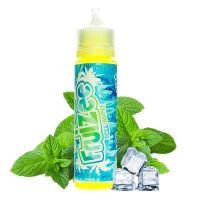 Fruizee Icee Mint 50ml